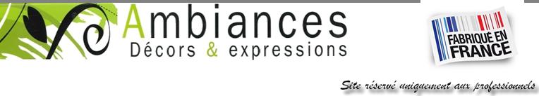 AMBIANCES décors et expressions Logo